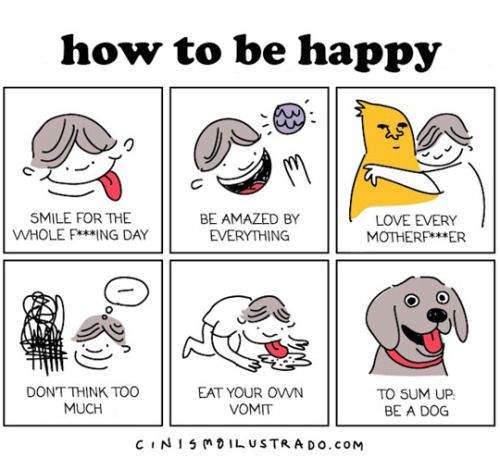 A Quick Guide to Happiness