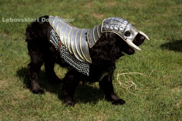 Medieval Armor for Dogs