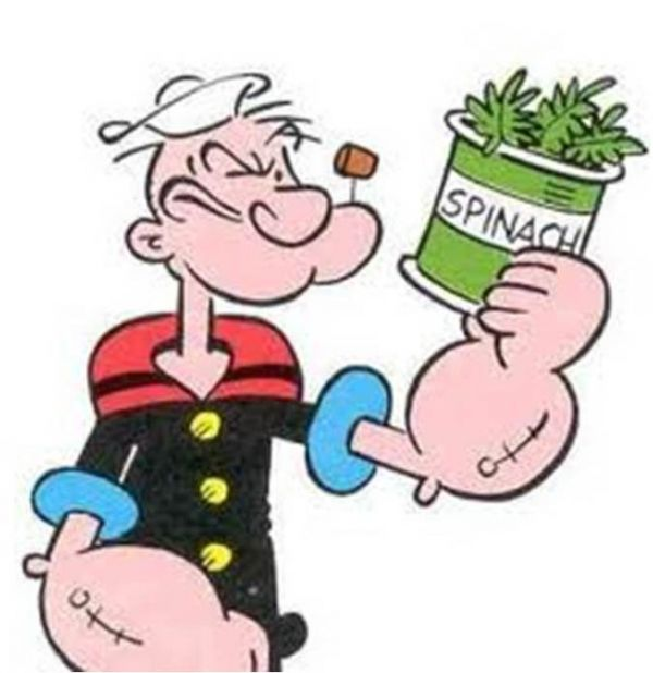Popeye and the Great Spinach Myth