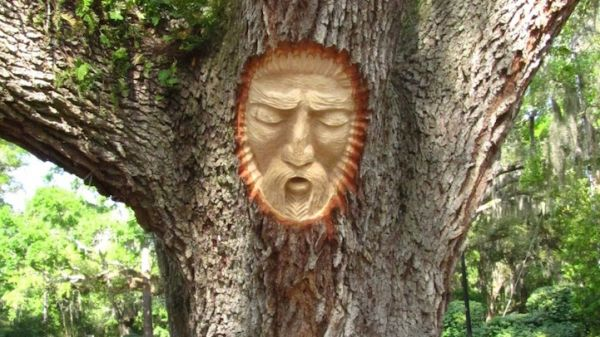 Keith jennings s tree spirits neatorama