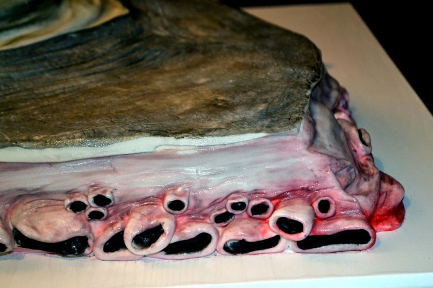 Pin Free Autopsy Photos Laci Peterson Download At Wareseekercom Ghost Cake on Pinterest
