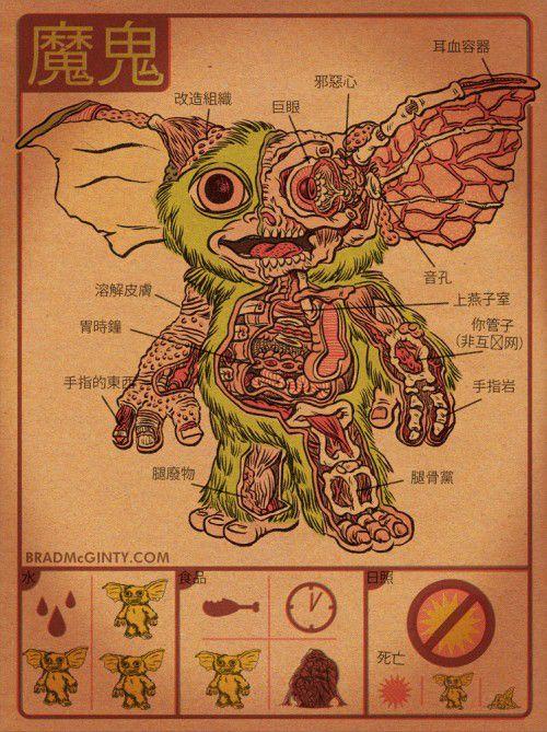 Alien Monster Anatomy Posts
