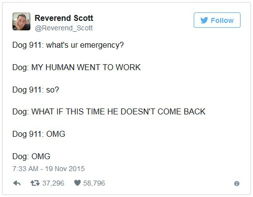 What Dogs Would Say If They Could Call 911