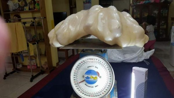 The World's Largest Pearl