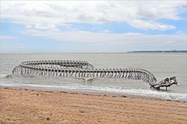 Giant Sea Snakes
