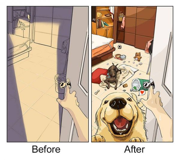 An Artist's Fond Illustrations of Life Before and After Owning His Golden Retriever
