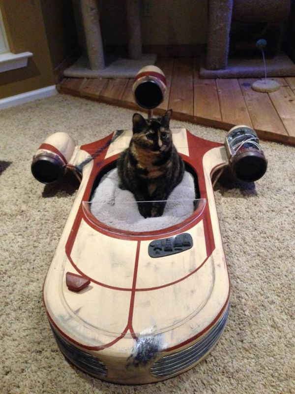 Star Wars Cat Bed Speeder