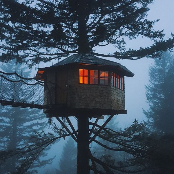 Excellent Man Quits Lucrative Nyc Job Builds Treehouse Of His Childhood Largest Home Design Picture Inspirations Pitcheantrous
