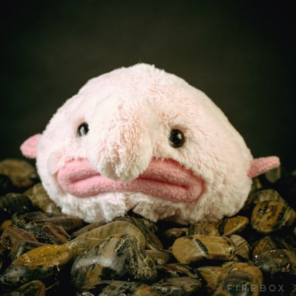 24 Great Plushies For Your Off-Beat Sweetie