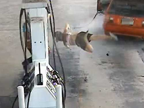 Phrase, matchless))) gas midget stealing can