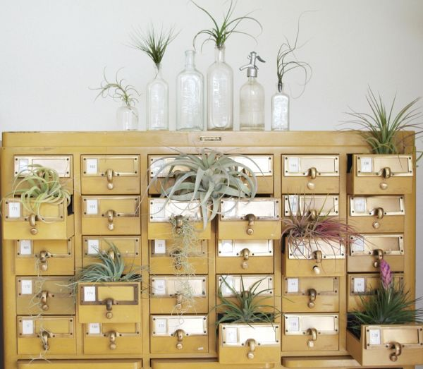 Old Card Catalog Cabinet Now Used as a Planter - Neatorama