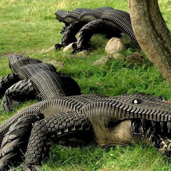 Tire alligators neatorama for What can you make out of old tires