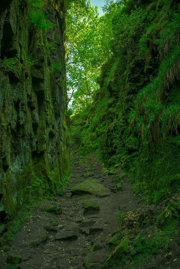 Luds Church: Lollards & the Green Chapel of Arthurian Legend