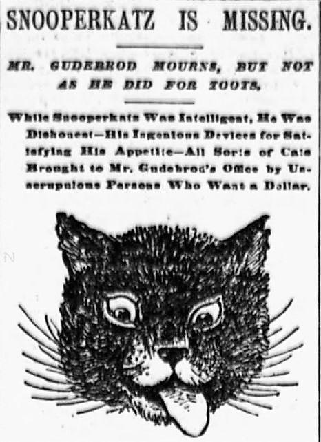 Snooperkatz, the Lost Cat of 1894