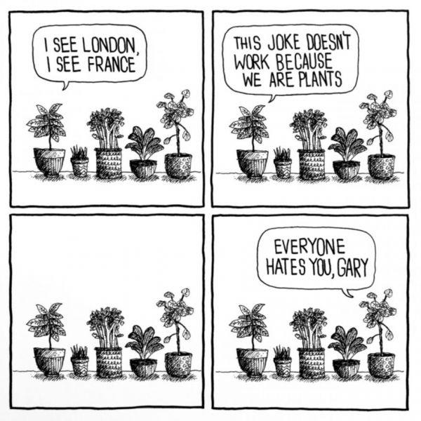 Houseplant Humor