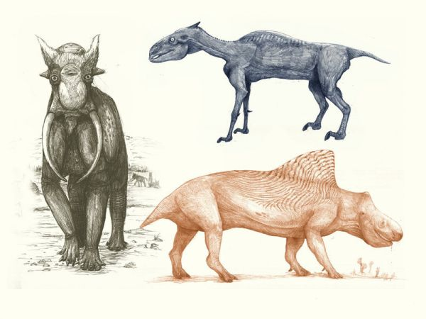 The Bad Hair, Incorrect Feathering, and Missing Skin Flaps of Dinosaur Art