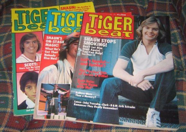 A Dreamy History of Teen Idol Magazines