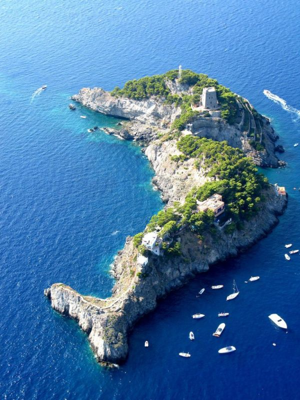 This Island Looks Like a Dolphin