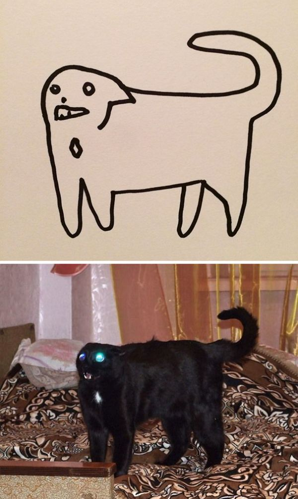 Crappy Cat Drawings That Are Actually Photorealistic