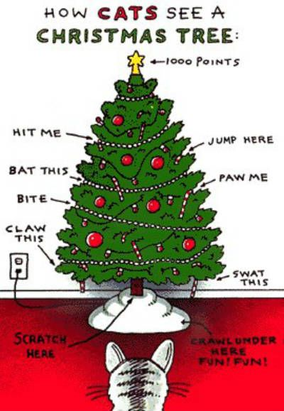 Even If Your Cat Is So Nice And Trained That It Would Never Actually Do  Those Things To Your Christmas Tree, I Bet He/she Is Certainly Fantasizing  About ...