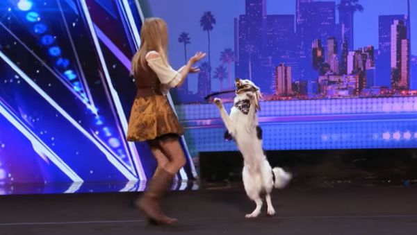 Sara Carson and Hero on <i>America's Got Talent</i>