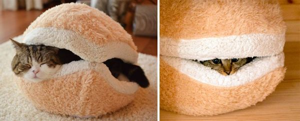 Top: Cat Tunnel Sofa By Seungji Mun Bottom: Cat Burger Bed By Petz Route