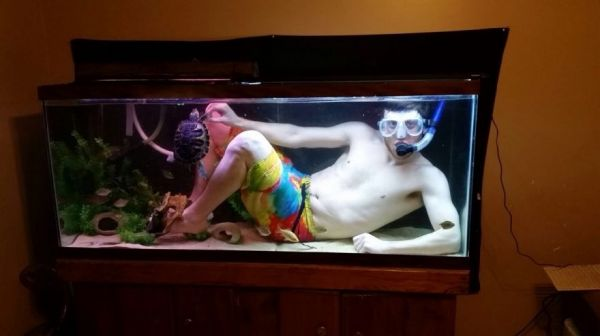 Kitchen Island Fish Tank aquarium posts