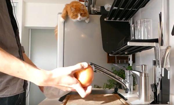 Jun S Kitchen Omurice