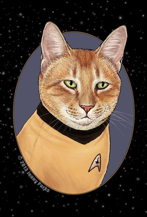 Star Trek Cats - Neato...