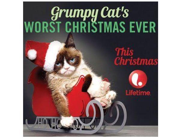 Grumpy cat gets a movie deal neatorama thecheapjerseys Gallery