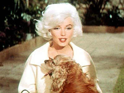 Marilyn Monroe And Her Pets Neatorama