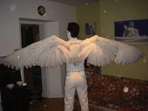 Крыло птицы сделать своими руками