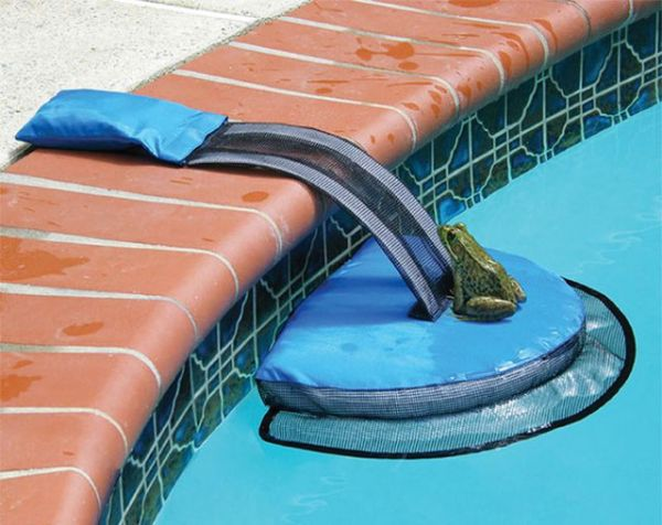 The Frog Log Saves Wildlife in Your Pool