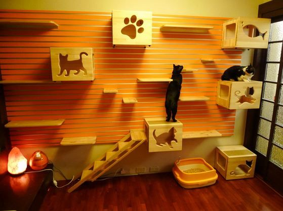 luxury cat playhouse neatorama