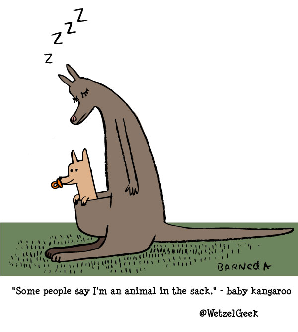 baby kangaroo cartoon
