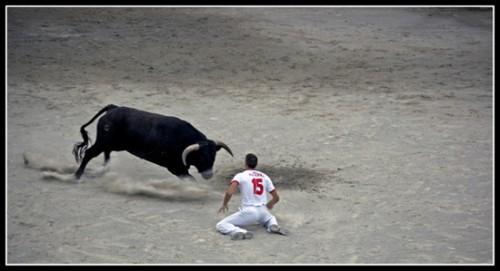Bull-leapers11