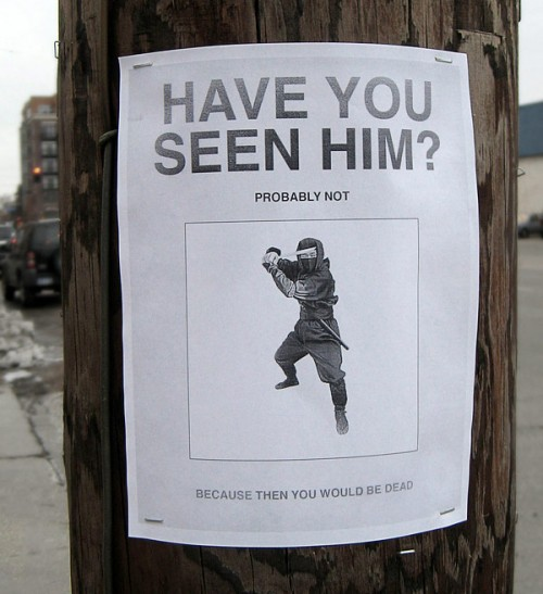 Funniest Meme You Have Ever Seen : Hilarious paper street signs neatorama