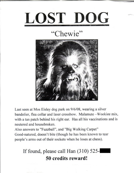 Hilarious Paper Street Signs Neatorama – Lost Pet Flyer Maker