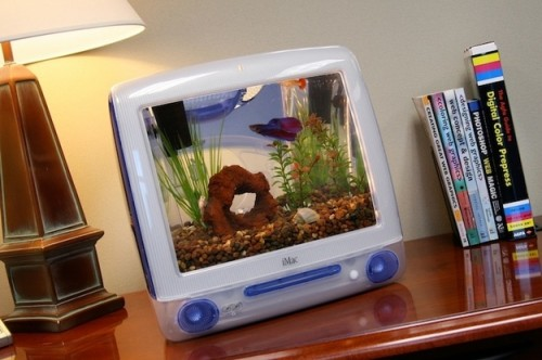 enhanced buzz 11562 1333555799 15 500x332 Interactive fish tanks placed in children's waiting rooms encourage ...