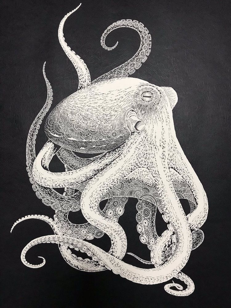 This Octopus Was Hand-Cut From A Single Sheet Of Paper