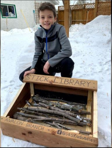 Child Creates Stick Library for Local Dogs