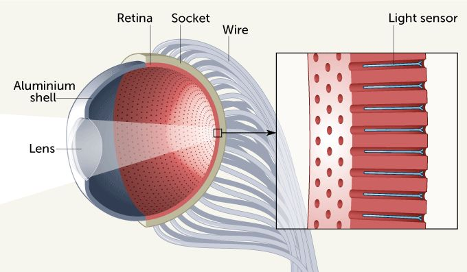 this-artificial-eye-might-outperform-the-real-human-eye