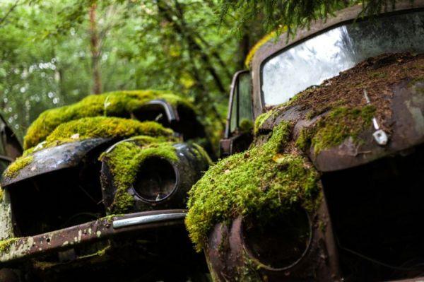 A Classic Car Graveyard In Sweden Neatorama
