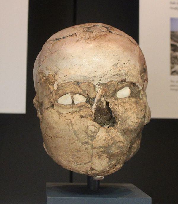 The Jericho Skull