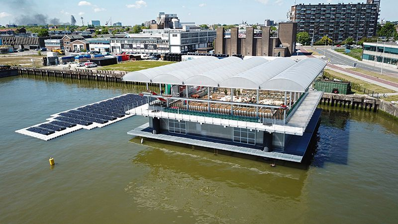 Floating Farms of the Future