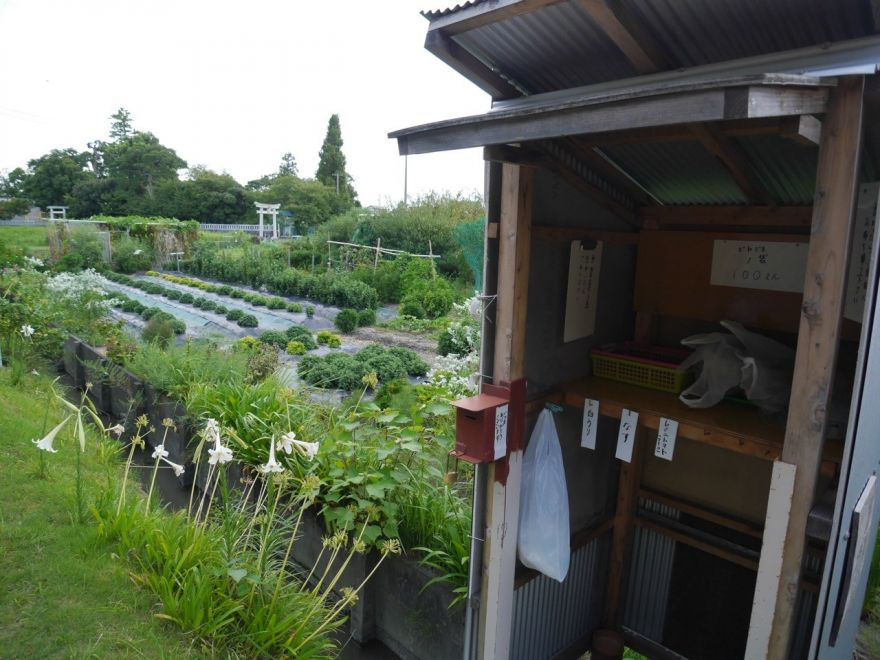 Unmanned Japanese Roadside Produce Stands