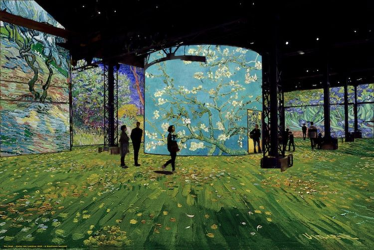 Stunning Exhibit Gives Visitors the Experience of Stepping Inside Van Gogh's Paintings