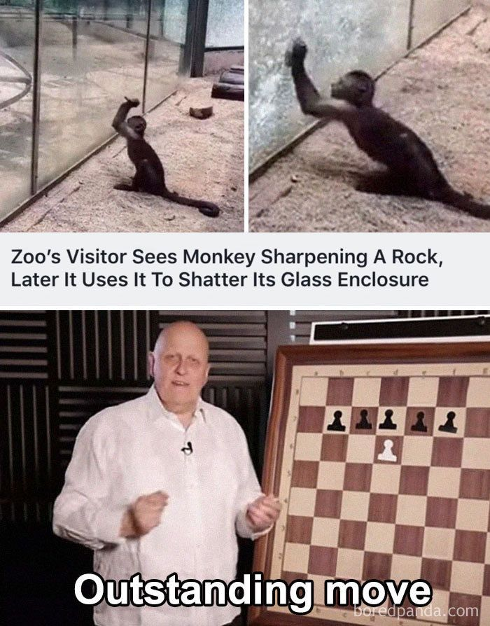 """The Best """"Outstanding Move"""" Memes In The Internet"""