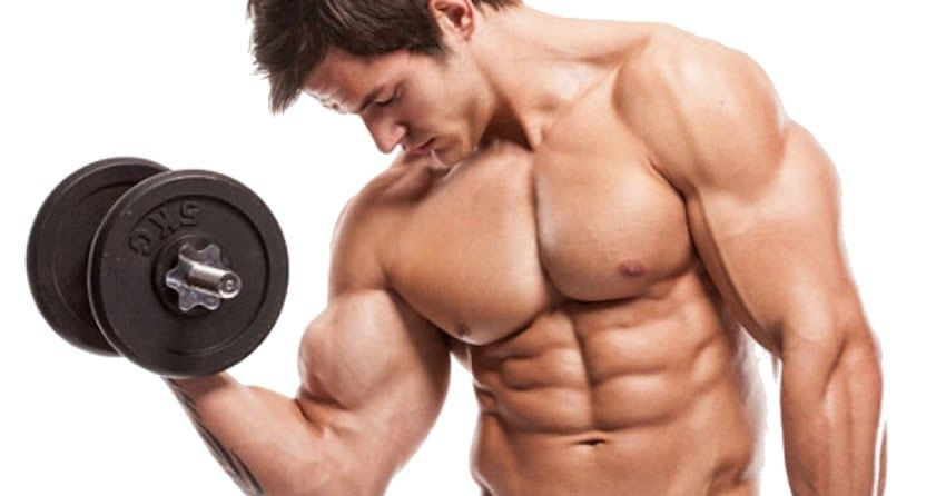 10 Minutes Workout : 110 Most Effective Bodyweight Exercises for Building Muscle & Strength