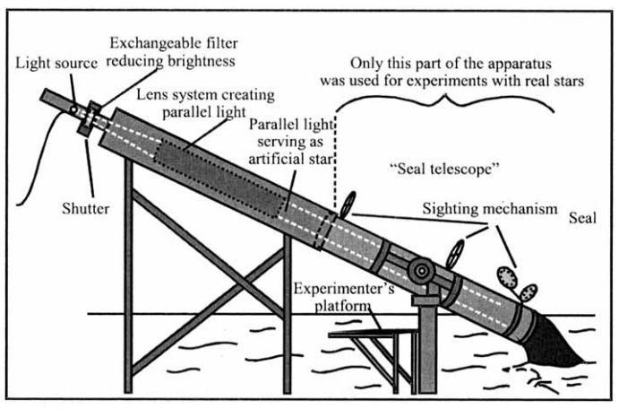 A Fake Telescope Built for Seals